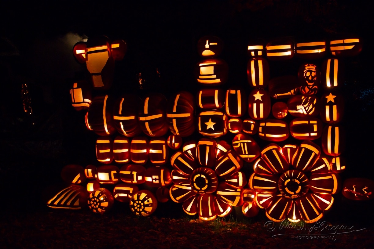 All aboard the pumpkin train!